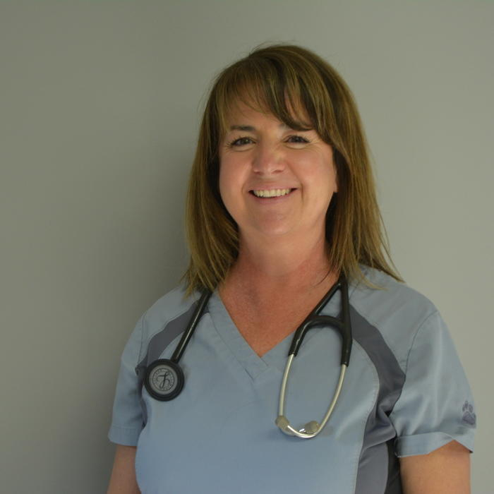 Dr. Jill  Thompson <br/> Owner/Veterinarian photo